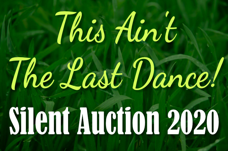 Silent Auction 2020 for Candy Dance