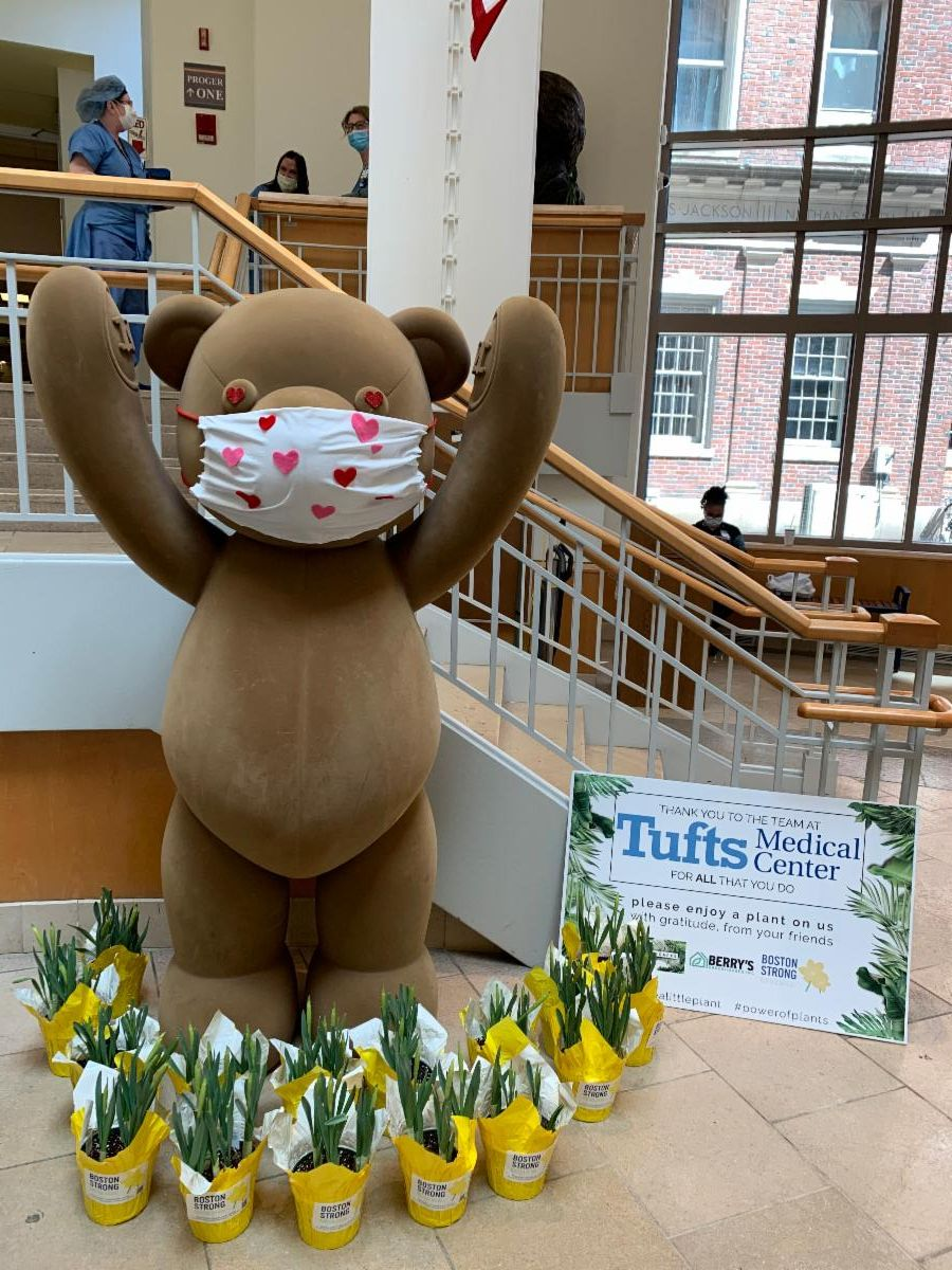 The Tufts Medical bear surrounded by flowers