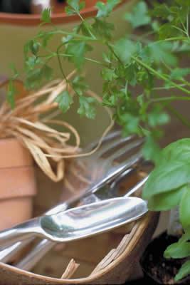 gardening-things.jpg