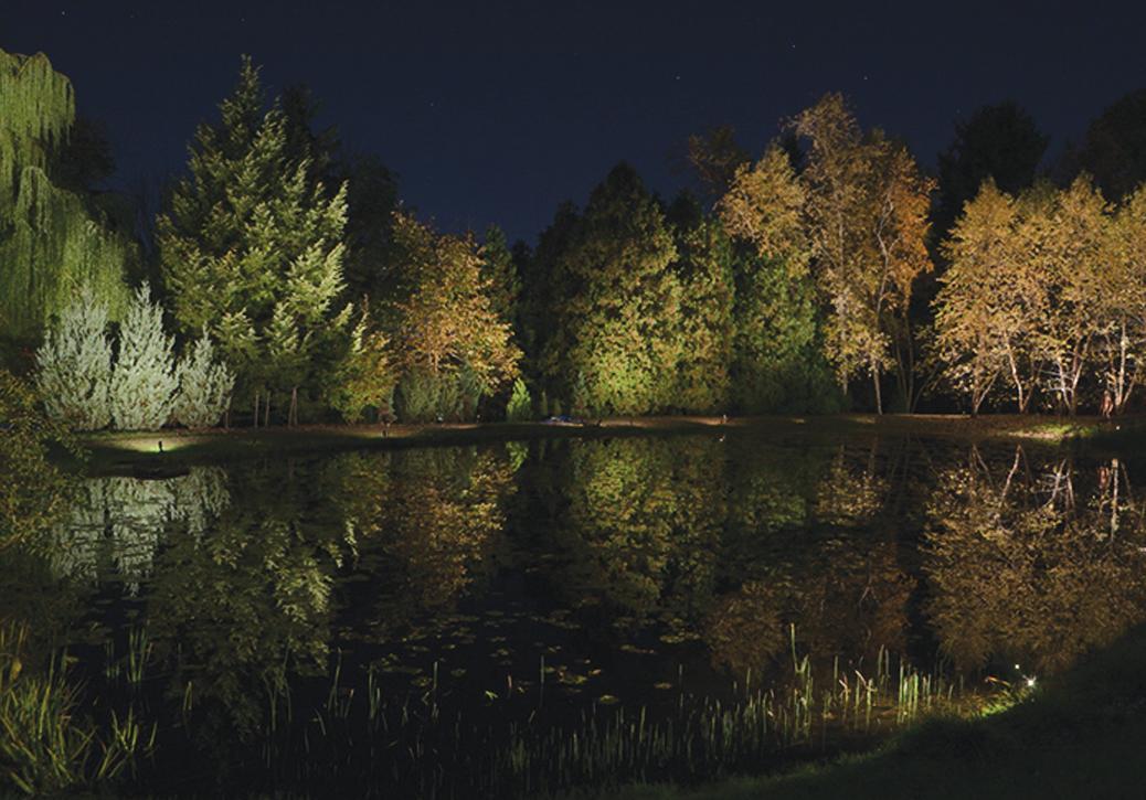 McKinely_Dog_Park_Pond_01.jpg