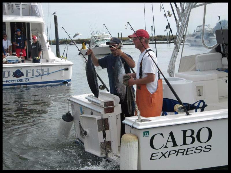 tuna fishing ilwaco