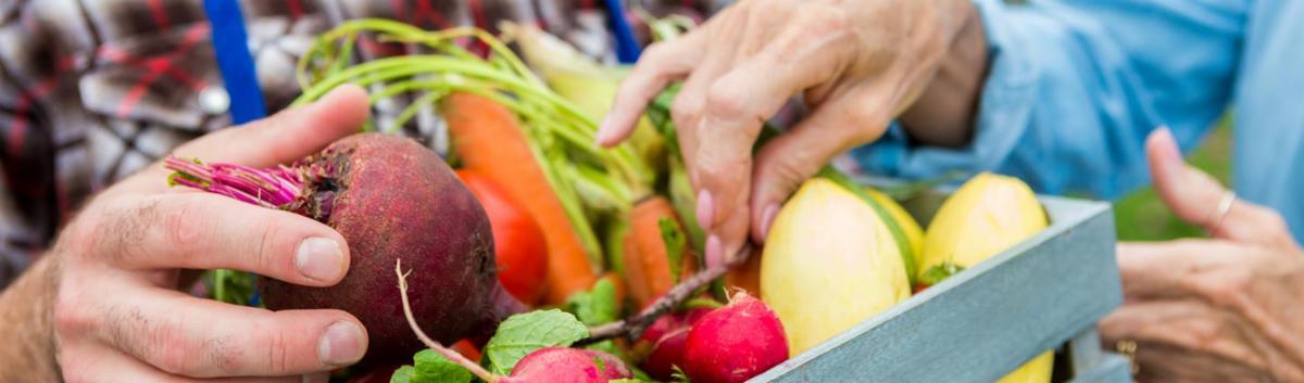 farmers market generic pic