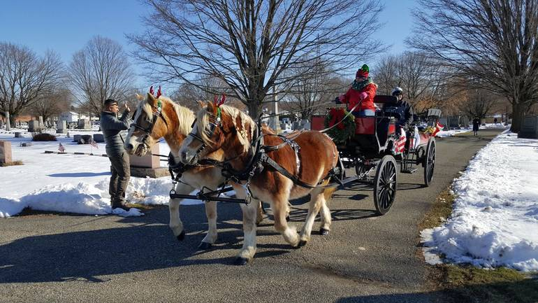 Horse-drawn carriage through the cemetery with snow on the ground