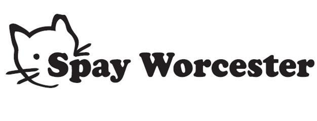 spay worcester