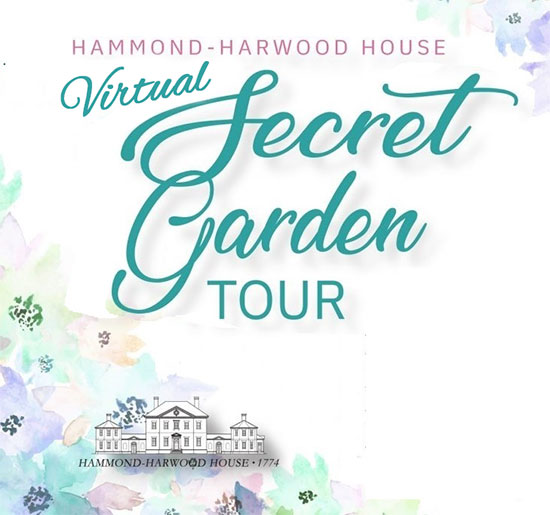 Hammond Harwood House Virtual Secret Garden Tour