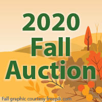 2020 Fall Auction graphic