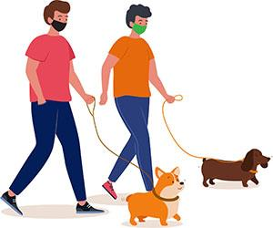 Boys with masks walking dogs