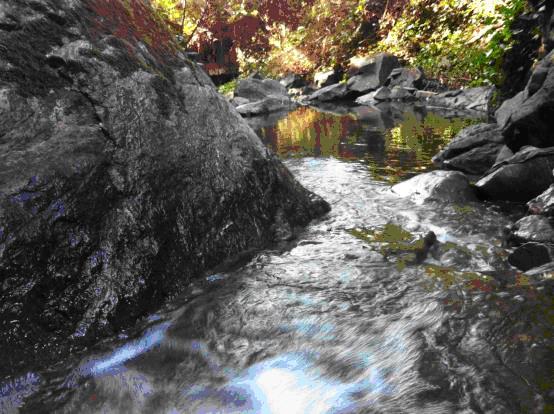 Palo Seco Creek