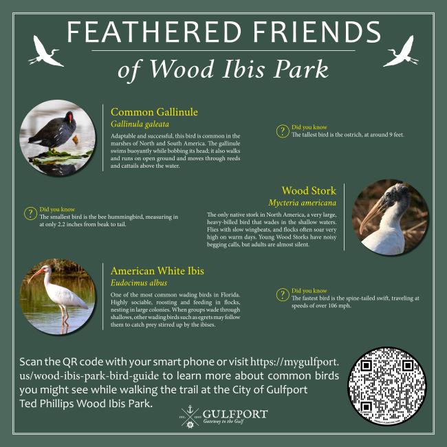 Wood Ibis Park Bird Sign.