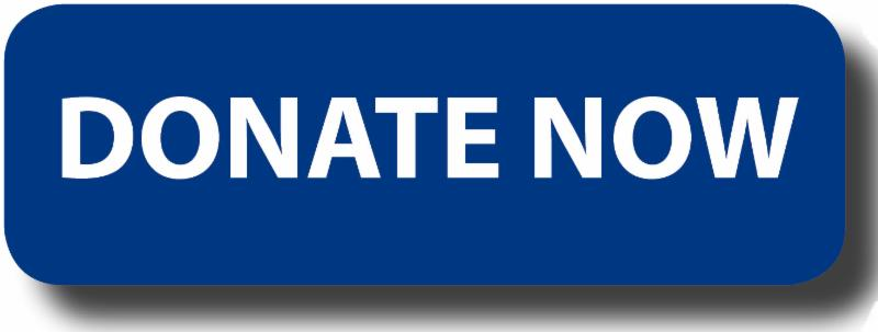 donate give donation button