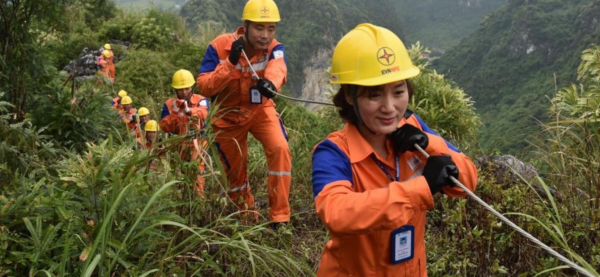 Female and male employees of Vietnam Electricity - the largest electric utility in Vietnam - lay power lines in Thai Nguyen Province. Pham Hong Long - Thai Nguyen Power Company