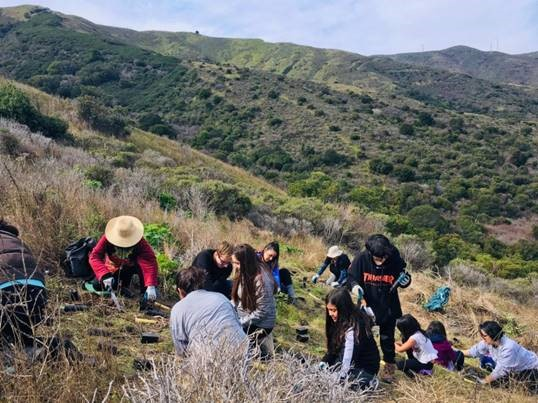Several volunteers, both adults and children, lean over to dig in the side of a hillside