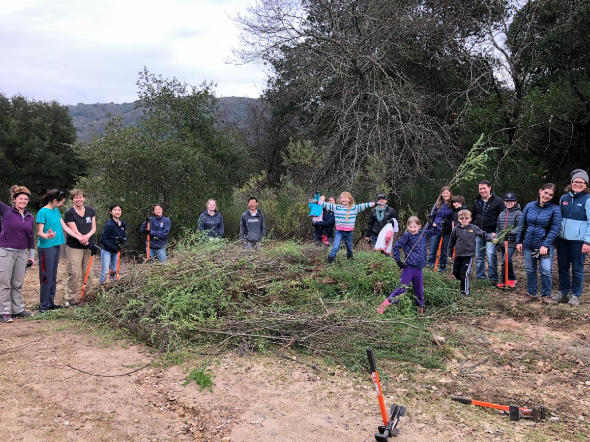 a large group of children and adults stands, some with upraised arms, around a large pile of uprooted plants