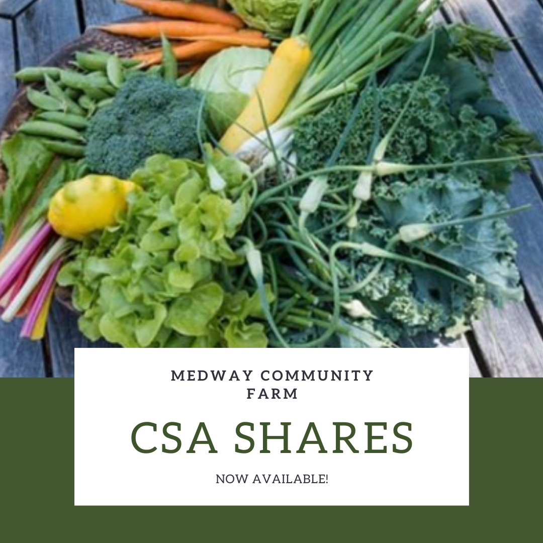 Medway Community Farm - CSA Shares