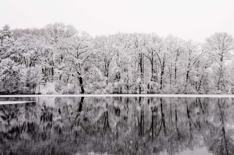 Choate Park Winter Scene