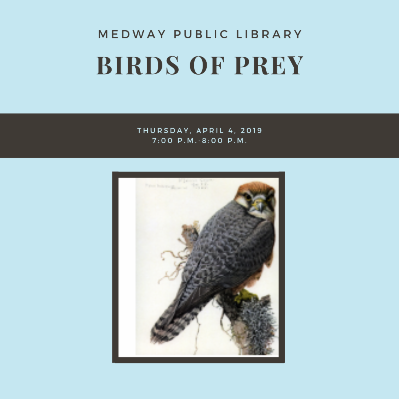 Medway Public Library - Birds of Prey