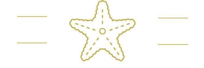 Gulf Star logo-high res