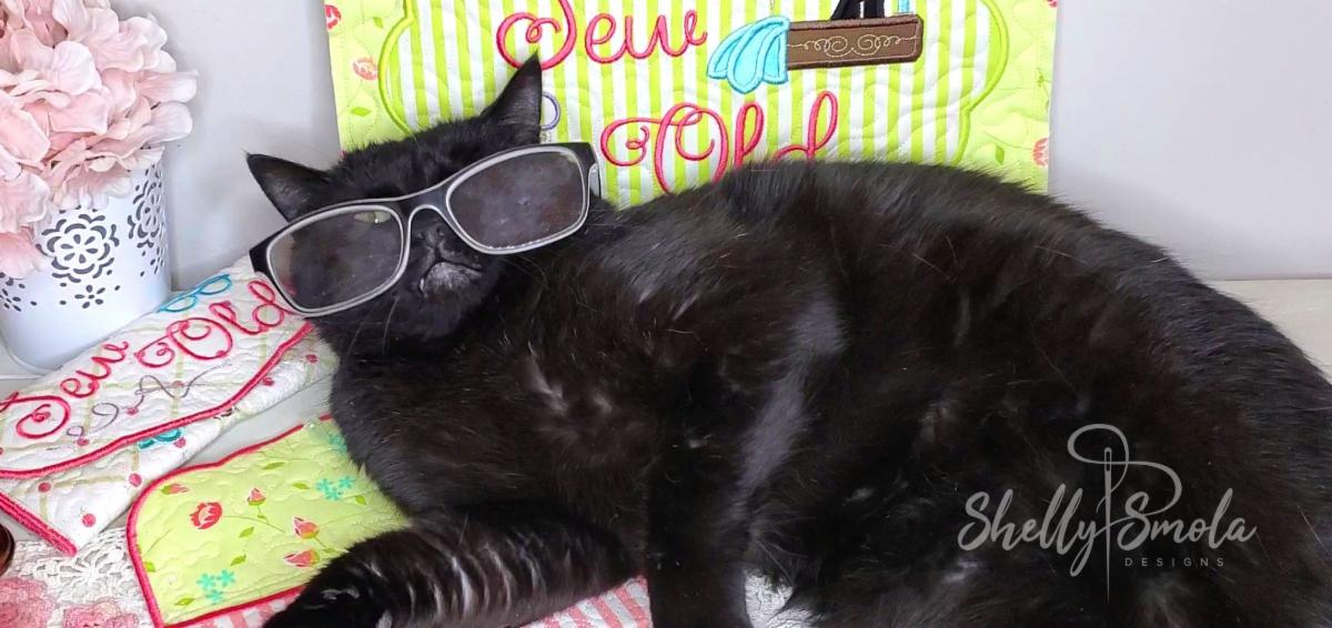 Spooky Wearing Glasses by Shelly Smola