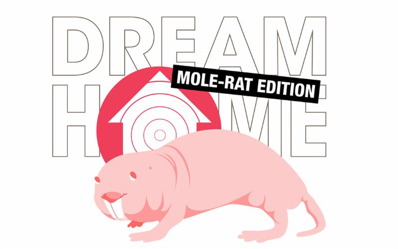 Naked Mole-Rat Artwork