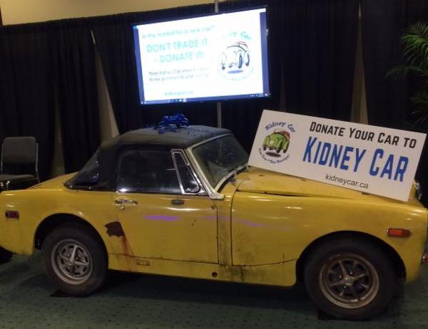 Yellow kidney car
