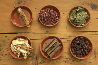 assorted-herbs.jpg