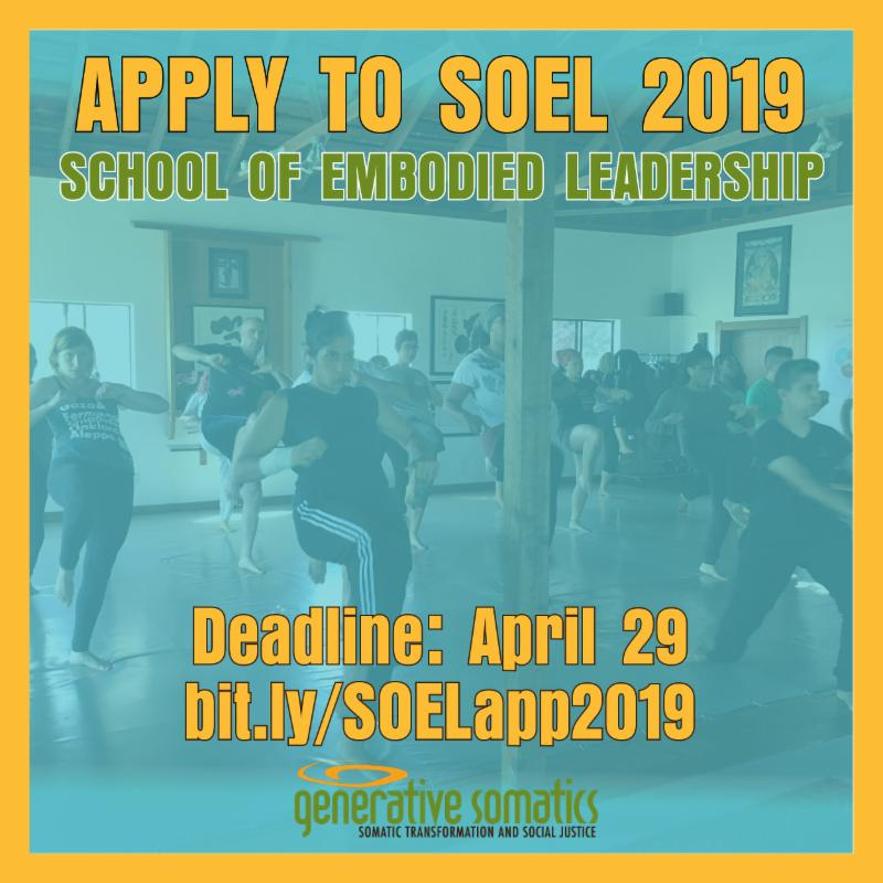 A square with a gold border with a photo inside - covered with a transparent light blue. The photo shows a group of people facing forward with their right legs lifted and knees bent. The graphic text reads Apply to SOEL 2019 with the deadline April 29.