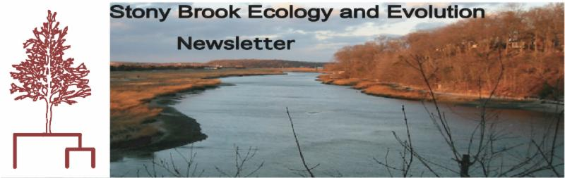 Stony Brook Ecology and Evolution Newsletter