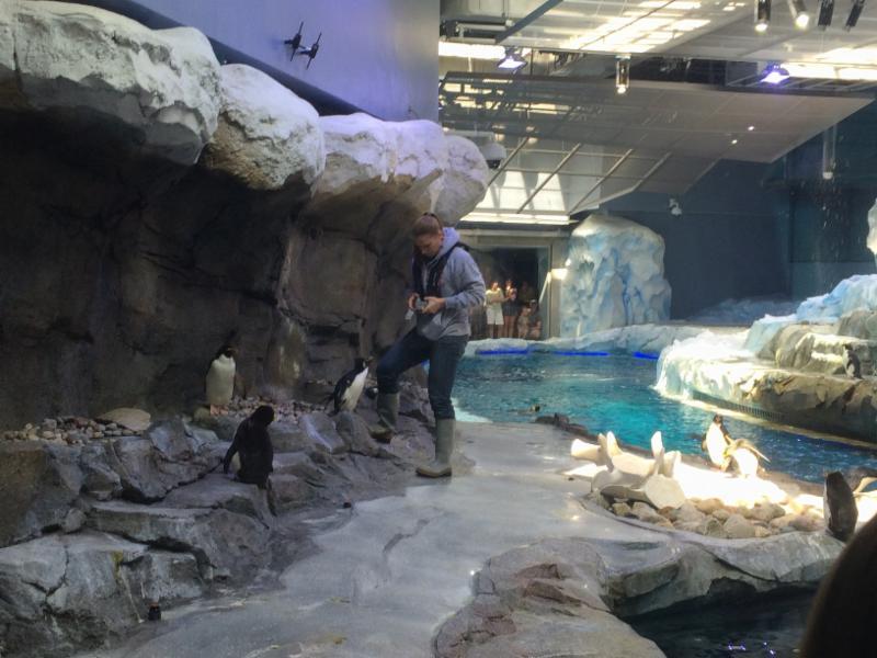 Maureen Lynch at the Detroit Zoo