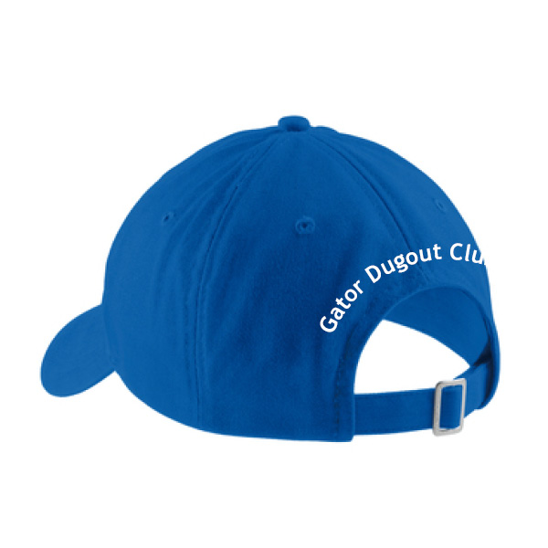 product-cp77-blue-back.jpg