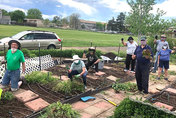 Members of the Boulder County Evening Optimist Club prepared soil and planted the Lafayette Elementary Garden