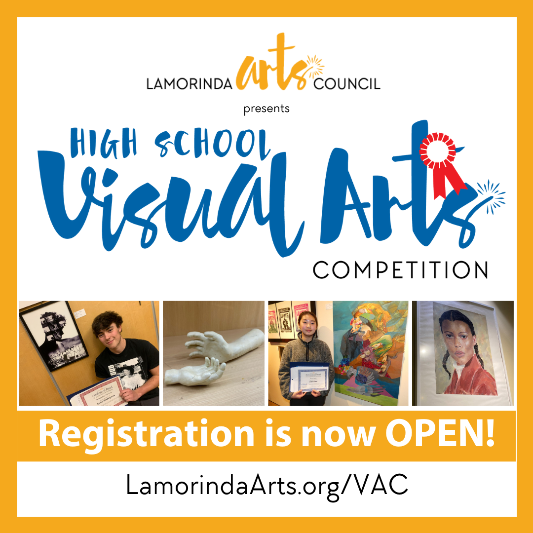 High School Visual Arts Competition