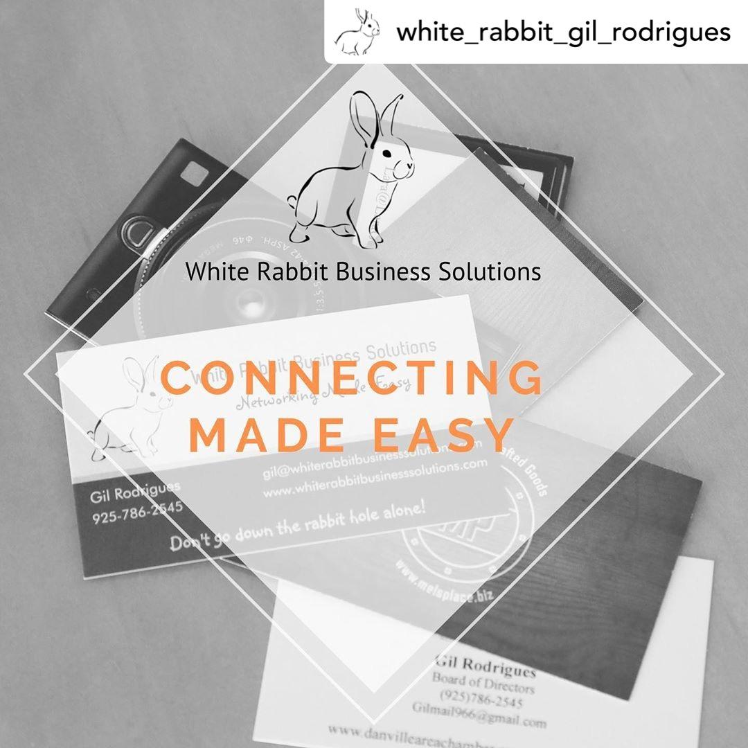 White Rabbit Business Solutions