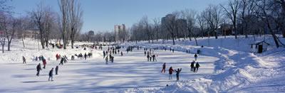 ice-skating-pond-sm.jpg