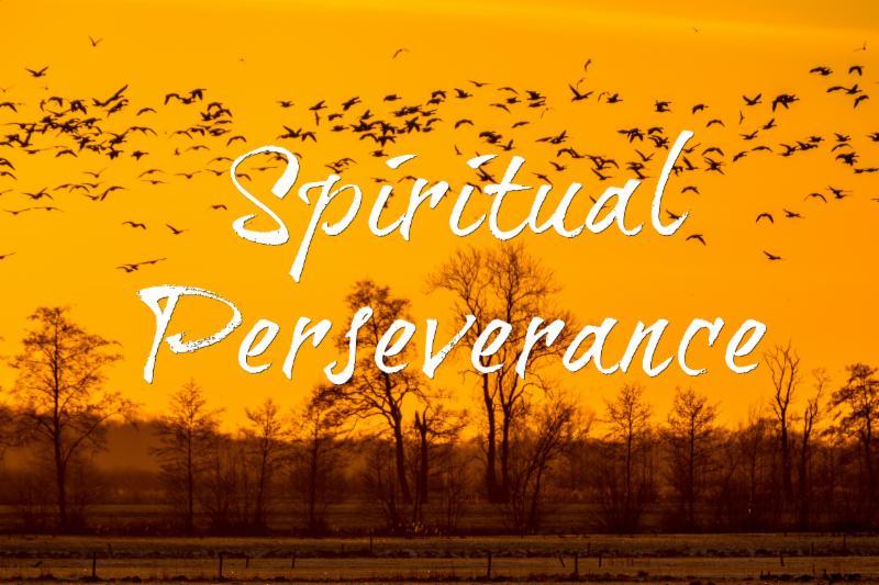 Spiritual Perseverance image