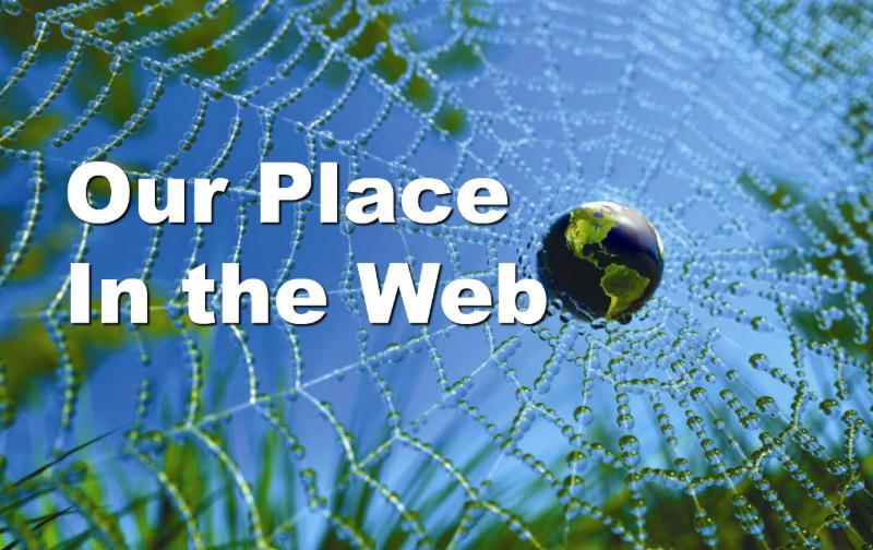 Earth/globe encircled in web