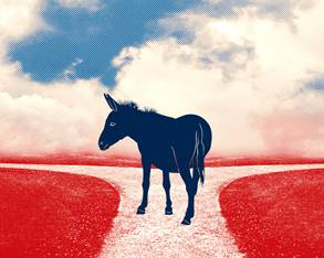 donkey, red/white/blue