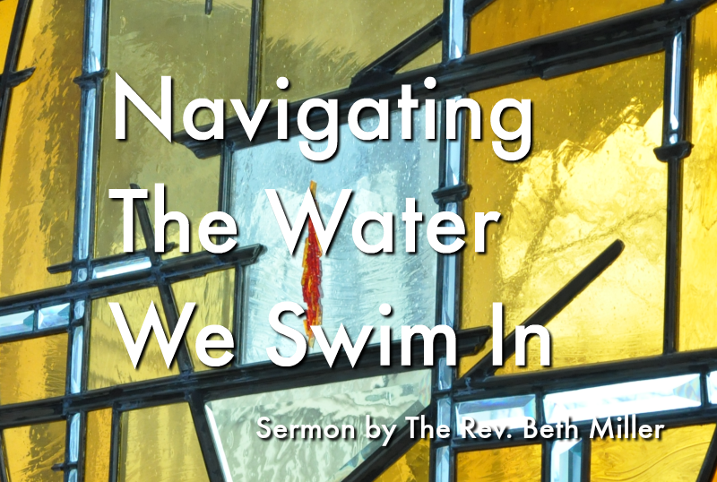 Navigating the Water We Swim In - sermon by Rev. Beth Miller