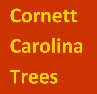 Cornett Carolina Trees.PNG