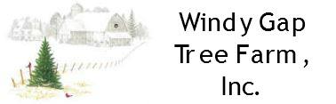Windy Gap Tree Farm.JPG