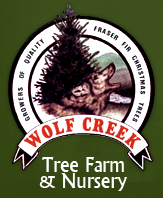 Wolf Creek.PNG