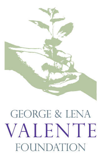 George and Lena Valenta Foundation Logo. Two cupped hands holding a seedling.