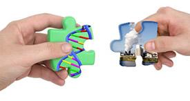 genes environment