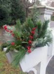 Winter Mailbox Planting