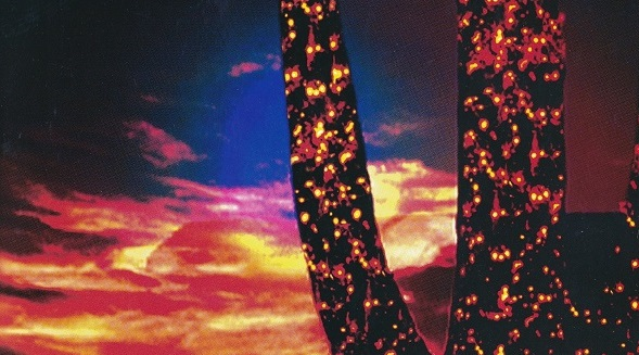 saguaro with lights at sunset