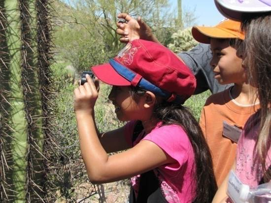 children looking at cactus