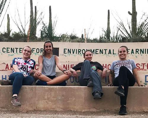 green fund team
