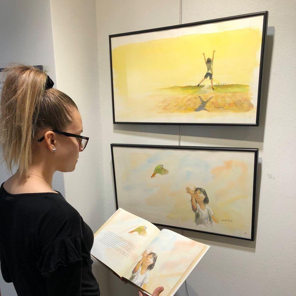 woman looking at illustrations
