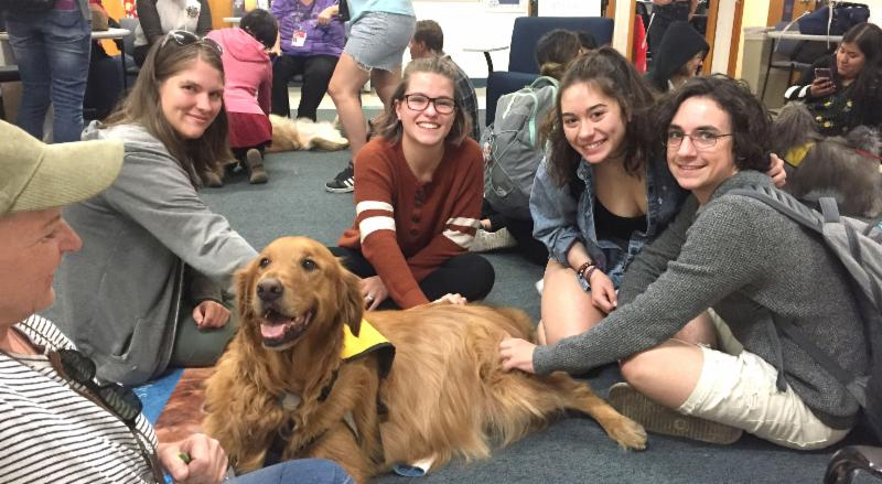 Hounds n' Hoagies - students with golden retriever dog