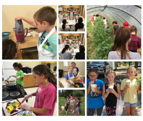 Collage of 4-H Farm to Kitchen Camp experience.
