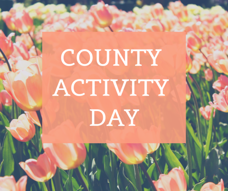 County Activity Day